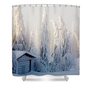 Winter Scene Shower Curtain by Kati Molin