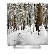 Winter Scene Print Shower Curtain