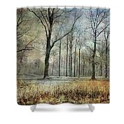 Winter Serenity Shower Curtain