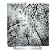 Winter Sky Shower Curtain