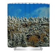 Winter Skyline Shower Curtain