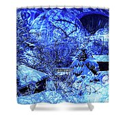 Winter Solace Shower Curtain