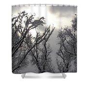 Winter Solstice Utah Shower Curtain