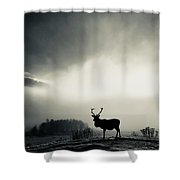 Winter Stag Shower Curtain