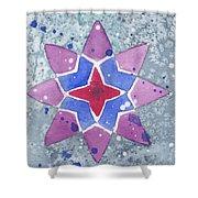 Winter Star Shower Curtain
