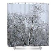 Winter Storm Shower Curtain