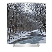 Winter Stream Shower Curtain
