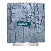 Winter Street Shower Curtain