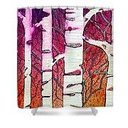 Winter Sunset Birch Shower Curtain