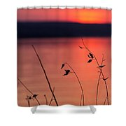 Winter Sunset I Shower Curtain