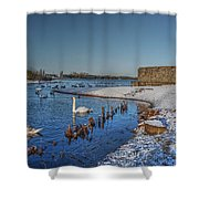 Winter Swan Lake Shower Curtain
