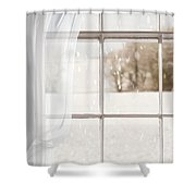 Winter Through A Window Shower Curtain