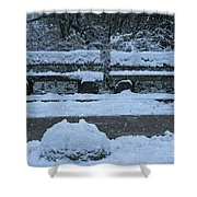 Winter Time Shower Curtain