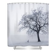 Winter Tree And Bench In Fog Shower Curtain