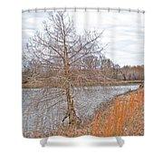 Winter Tree On Pond Shore Shower Curtain