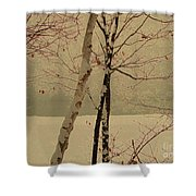 Winter Tree Over Bay Shower Curtain