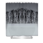 Winter Tree Symmetry Long Horizontal Shower Curtain