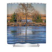 Winter Tree - Walnut Creek Lake Shower Curtain