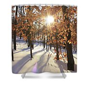 Winter Trees #1 Shower Curtain