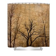 Winter Trees In The Bottomlands 2 Shower Curtain