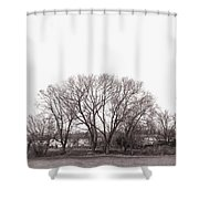 Winter Trees Monochrome Shower Curtain