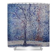 Winter Trees Shower Curtain