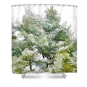 Winter Trees On Snow 1 Shower Curtain