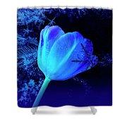 Winter Tulip Blue Theme 2 Shower Curtain