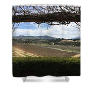 Winter Vines Shower Curtain