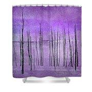 Winter Violet  7913violet Shower Curtain