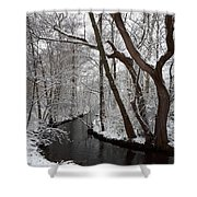 Winter Walk In The Woods Shower Curtain