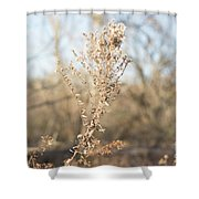 Winter Weeds Shower Curtain