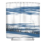 winter weeds SCN M 80 Shower Curtain