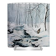 Winter Whispers Shower Curtain