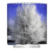 Winter Wonder Shower Curtain