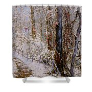 Winter Wonderland Shower Curtain by Ben Kiger