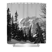Winter Wonders 3 Shower Curtain