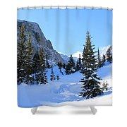 Winter Wonders Shower Curtain