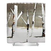 Winter Wood Shower Curtain