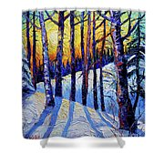 Winter Woodland Sunset Modern Impressionism Palette Knife Oil Painting Shower Curtain