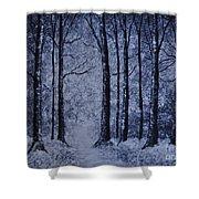 Winter Woods Eve Shower Curtain