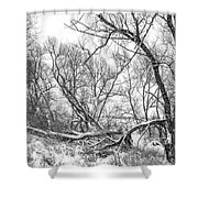 Winter Woods On A Stormy Day 2 Bw Shower Curtain