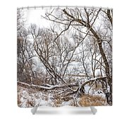 Winter Woods On A Stormy Day 2 Shower Curtain