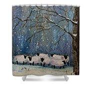 Winter Wool  Shower Curtain