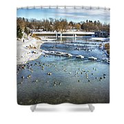 Wintering Geese Shower Curtain