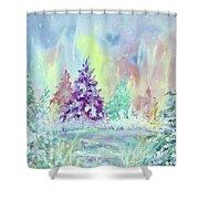Winter Wonderland Aurora Borealis  Shower Curtain