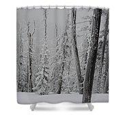 Winterland Shower Curtain