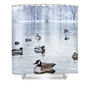 Winterlong Shower Curtain