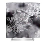 Winter's Beauty Shower Curtain
