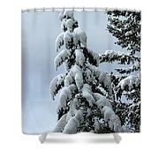 Winter's Burden Shower Curtain